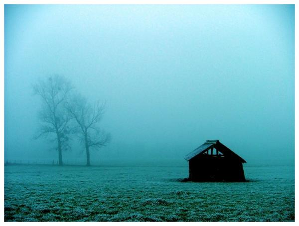 blizzard_by_jeanfrancois_no_temnafotografia