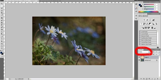 tutorial-blendmodes-fernandasantiago-temnafotografia-3