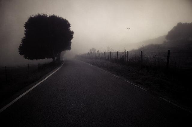 cole-rise-no-temnafotografia6