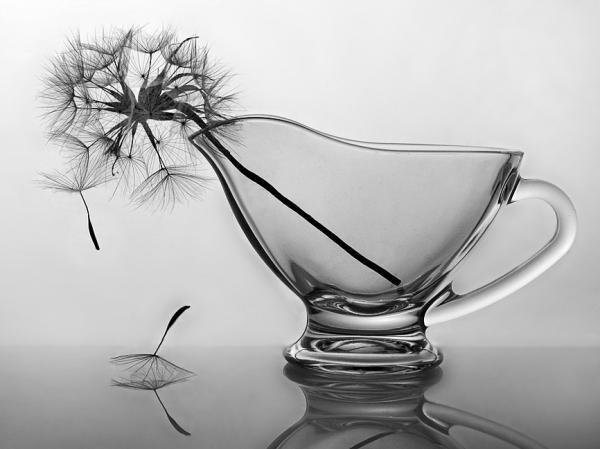 Irina-Furashova_no-temnafotografia7