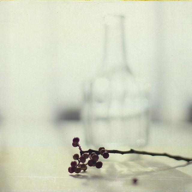 inspiracao-temnafotografia-agnescaixas-helosaaraujo7