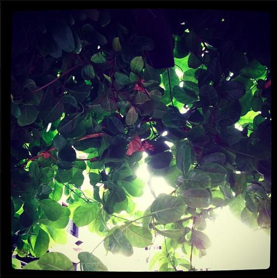 instagram-porqueusalo-temnafotografia-helosaaraujo